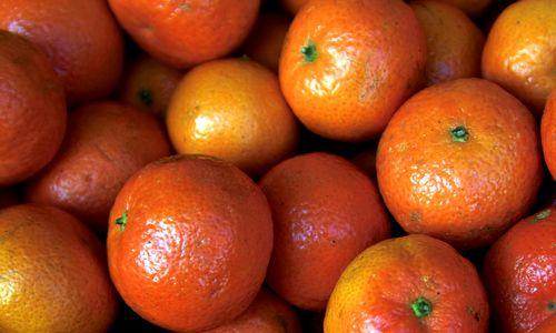 Les oranges, clémentines et mandarines sont riches en vitamine C