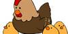 Poules et ses poussins