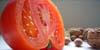 La tomate entre dans la composition du régime crétois