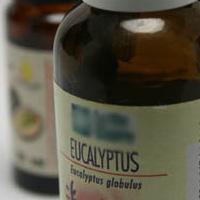 Les huiles essentielles permettent de lutter contre la grippe et les virus