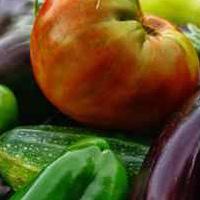Récoltes de légumes bio
