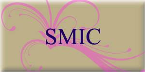 Le montant du Smic en 2015